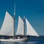 schooner sailing