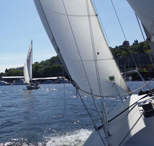 Sailing on a sunny day!
